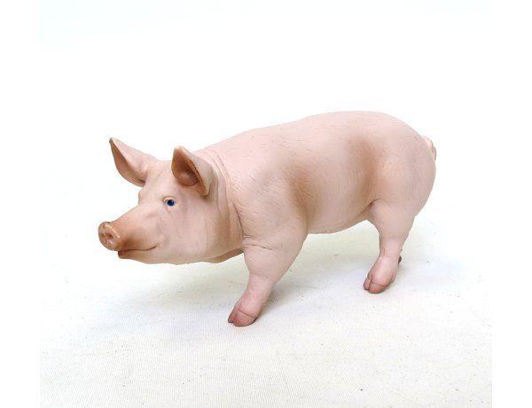 Papo Pig