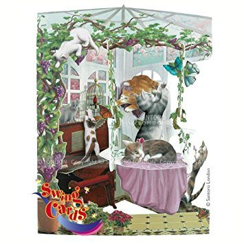 Swing Card Cats in Conservatory
