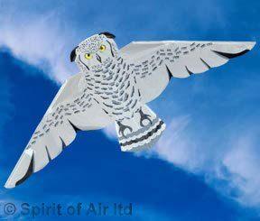 Kite – Snowy Owl