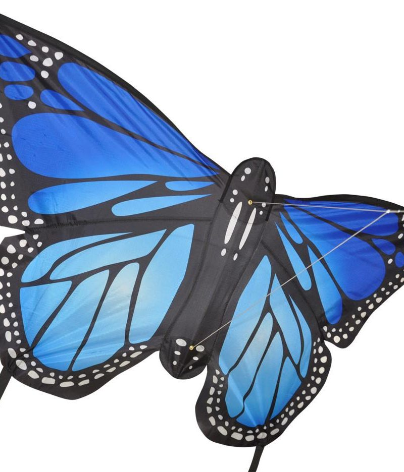 Monarch Butterfly – Blue
